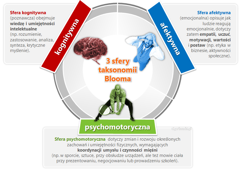Taksonomia Blooma - Sfery